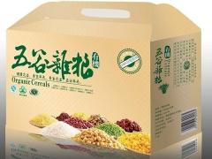 土特产包装盒 (2)